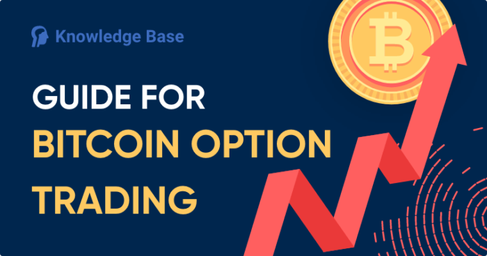 guide bitcoin option trading cover image
